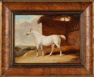 William Howard Robinson British 1864after 1910 Portrait of a White Horse