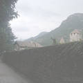 Chateau dYquem 1990
