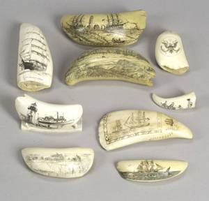 Group of Seven Scrimshaw Whales Teeth