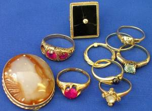 Nine Assorted Rings and a Hardstone Clip