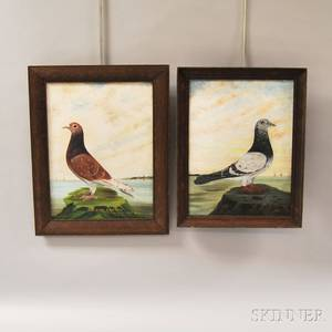 Two 20th Century American School Oil on Panel Portraits of Pigeons
