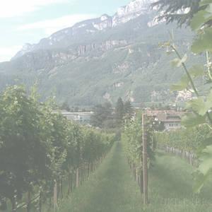 Castelgiocondo Brunello di Montalcino Riserva 1997