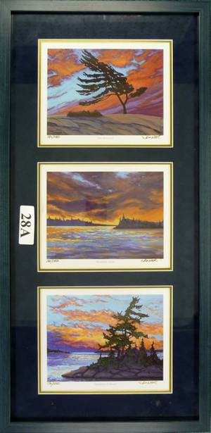 010182 SKINNER COLOR TRIPTIK GEORGIAN BAY 24 X 8