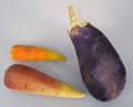 Velvet eggplant pincushion