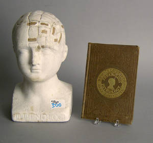 Fowler chalk Phrenology head