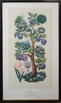 080530 SOPHIE PORTER PRINT FRUITS AND FLOWERS