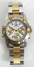 110450 SECTOR ADV 500 MENS STAINLESS WRIST WATCH