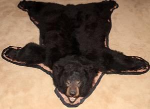 AMERICAN BLACK BEAR FULL SKIN RUG