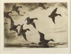 Frank Weston Benson American 18621951 Black Ducks at Dusk