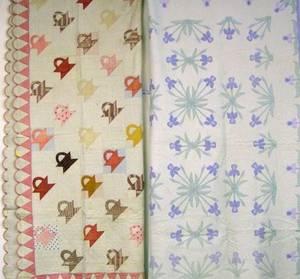 Missouri Iris Pattern Applique Cotton Quilt and a New Jersey Pieced and Applique Cotton Quilt