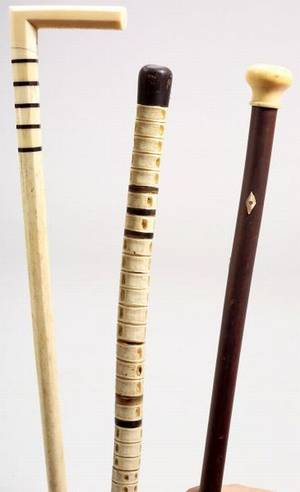 Two Walking Sticks and a Cane