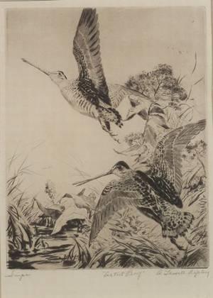 Aiden Lassell Ripley American 18961969 Snipe