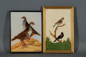 Lot of Two Ornithological Paintings Continental School 19th Century Red Wings
