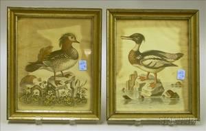Two Giltwood Framed George Edwards Handcolored Ornithological Lithographs