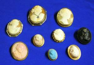 Nine Shell Carved and Glass Cameo Brooches and Pendant Brooches