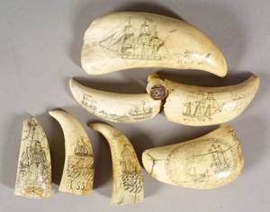 Seven Engraved Whales Teeth and an Ivory Whale Stamp