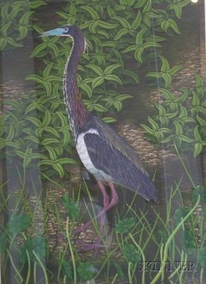 John Costin American 20th Century Large Framed Handcolored Etching of a Tricolored Heron