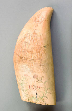 Scrimshaw whale tooth dated 1859