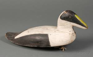 Carved and Painted Eider Duck Drake Decoy