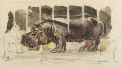 Waldo Midgley American 18881986 Lot of Two Watercolors Hippo and Rhino