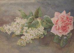 Framed Watercolor Still Life with Lilacs and Roses