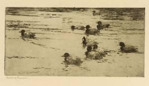 Frank Weston Benson American 18621951 Ducks Swimming