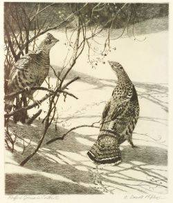Aiden Lassell Ripley American 18961969 Lot of Two Etchings Ruffed Grouse in Winter