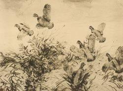 Aiden Lassell Ripley American 18961969 Quail