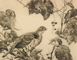 Aiden Lassell Ripley American 18961969 Quail and Grapes