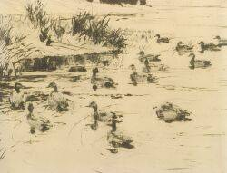 Frank Weston Benson American 18621951 Ducks at Play