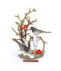 Boehm Junco bird group