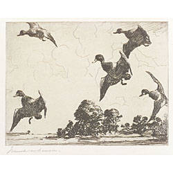 Frank Weston Benson American 18621951 Adam EM Paffs Etchings and Drypoints by Frank W Benson