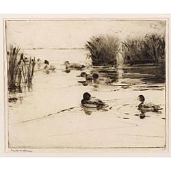 Frank Weston Benson American 18621951 Ducks