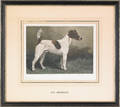 Two John Emms pencil signed dog prints