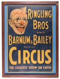 Ringling Brothers and Barnum  Bailey Combined Circus