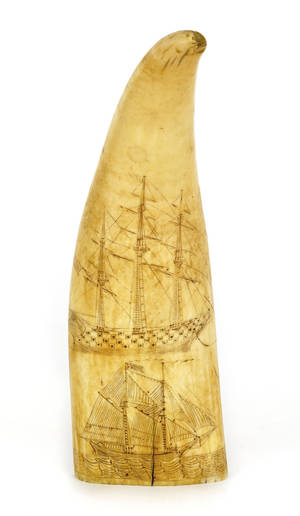 Scrimshaw whale tooth 19th c