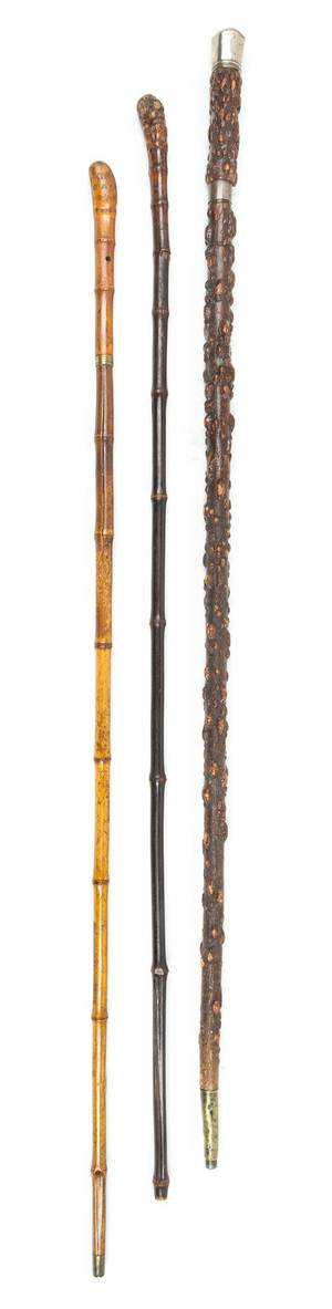 Three Rootwood Sword Canes
