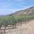 Schrader CCS Beckstoffer ToKalon Vineyard Cabernet Sauvignon 2012 2 bottles