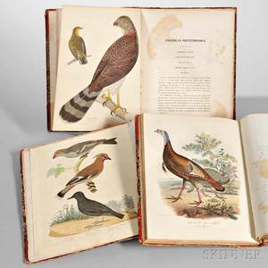 Bonaparte Charles Lucian 18031857 American Ornithology or the Natural History of the Birds Inhabiting the United States Not Given