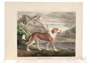 Doughty John  Thomas 17931856 The Cabinet of Natural History and American Rural Sports with Illustrations