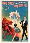 WOOD WILLIAM Woods Startling Sensation Woodita