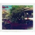 Hong lei chinese b 1960