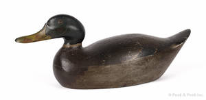 Mason Decoy Company carved and painted premier grade mallard duck decoy ca 1910