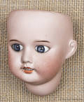 SFBJ French bisque doll head
