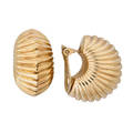 Yellow gold shell form ears clips