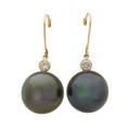 Tahitian pearl  diamond drop earrings