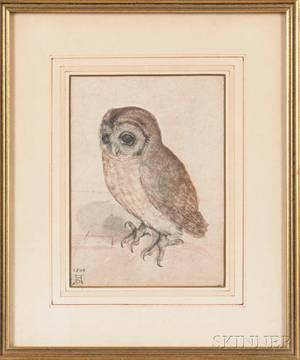 After Albrecht Durer German 14711528 Photographic Reproduction of The Little Owl
