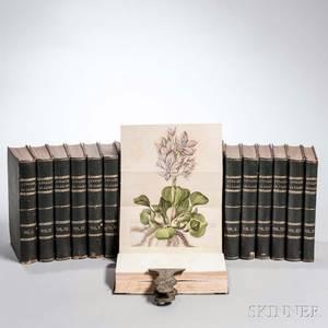 Annales de Flore et de Pomone ou Journal des Jardins et des Champs