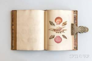 Knorr Georg Wolfgang 17051761 Les Delices des Yeux et de lEsprit ou Collection Generale des Differentes Especes de Coquillages qu