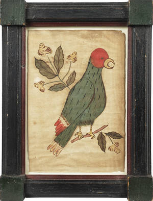 Pennsylvania pen and ink fraktur drawing of a parrot late 19th c